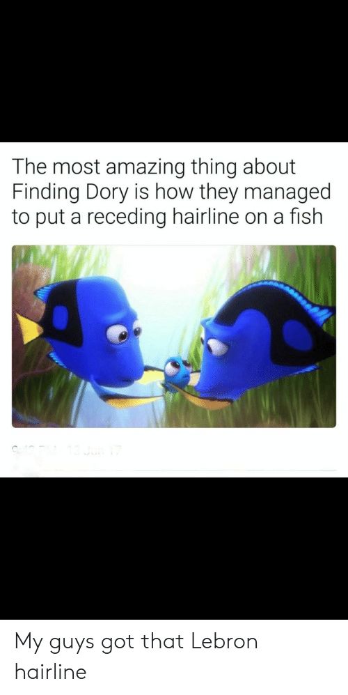 Hairline, Finding Dory, and Fish: The most amazing thing about  Finding Dory is how they managed  to put a receding hairline on a fish My guys got that Lebron hairline