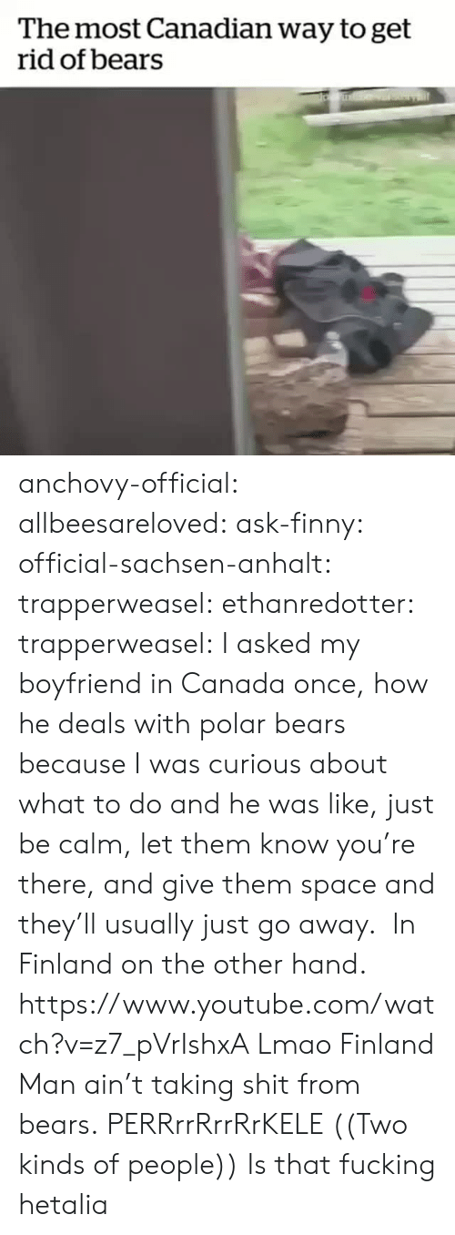 Fucking, Lmao, and Shit: The most Canadian way to get  rid of bears anchovy-official: allbeesareloved:  ask-finny:  official-sachsen-anhalt:  trapperweasel:   ethanredotter:  trapperweasel: I asked my boyfriend in Canada once, how he deals with polar bears because I was curious about what to do and he was like, just be calm, let them know you're there, and give them space and they'll usually just go away.  In Finland on the other hand. https://www.youtube.com/watch?v=z7_pVrIshxA  Lmao Finland Man ain't taking shit from bears.   PERRrrRrrRrKELE  ((Two kinds of people))   Is that fucking hetalia