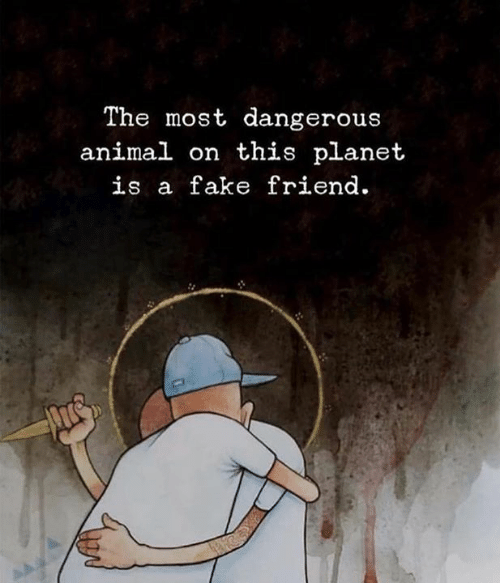 Fake, Animal, and Friend: The most dangerous  animal on this planet  is a fake friend.