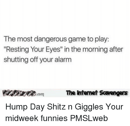 """Hump Day, Alarm, and Game: The most dangerous game to play:  Resting Your Eyes"""" in the morning after  shutting off your alarm  PinsiwecomThe htemet Scavengers <p>Hump Day Shitz n Giggles  Your midweek funnies  PMSLweb </p>"""