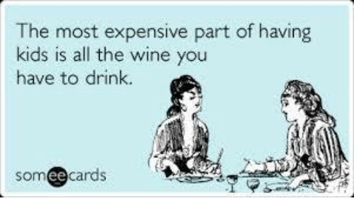 Memes, Wine, and Kids: The most expensive part of having  kids is all the wine you  have to drink.  ee cards  SOm