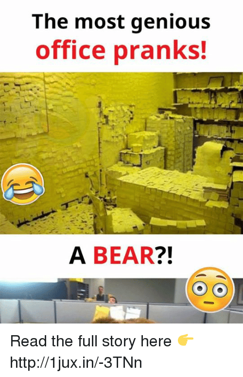 The Most Genious Office Pranks A Bear Read The Full Story Here