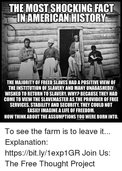 Life, Memes, and Free: THE MOST SHOCKING FACT  INAMERICAN HISTORY  THE FREETHOUGHTPROJECT.coM  THE MAJORITY OF FREED SLAVES HAD A POSITIVE VIEW OF  THE INSTITUTION OF SLAVERY AND MANY UNABASHEDLY  WISHED TO RETURN TO SLAVERY. WHY? BECAUSE THEY HAD  COME TO VIEW THE SLAVEMASTER AS THE PROVIDER OF FREE  SERVICES, STABILITY AND SECURITY. THEY COULD NOT  EASILY IMAGINE A LIFE OF FREEDOM  NOW THINK ABOUT THE ASSUMPTIONS YOU WERE BORN INTO. To see the farm is to leave it...   Explanation: https://bit.ly/1exp1GR Join Us: The Free Thought Project