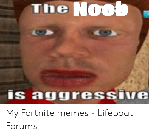 The N00 Is aguressiNe My Fortnite Memes - Lifeboat Forums