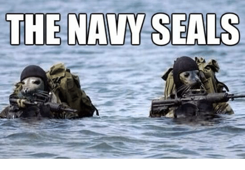 Military: THE NAVY SEALS