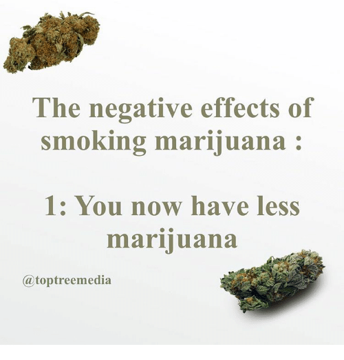 the downsides of marijuana Marijuana is very popular in the united states of america and over 1 in 3 people there have inhaled this substance in some manner or the other.