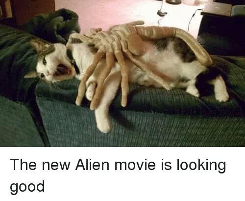 the new alien movie is looking good 3432435 the new alien movie is looking good movies meme on me me