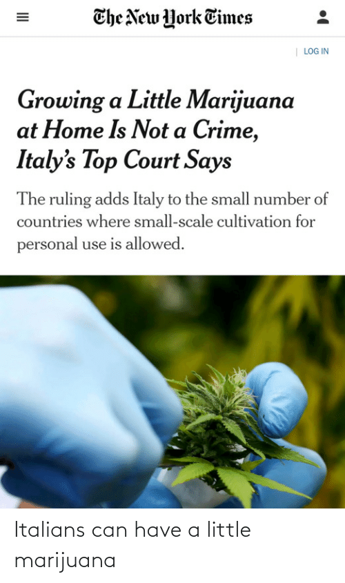 Crime, New York, and Home: The New York Times  | LOG IN  Growing a Little Marijuana  at Home Is Not a Crime,  Italy's Top Court Says  The ruling adds Italy to the small number of  countries where small-scale cultivation for  personal use is allowed.  II Italians can have a little marijuana