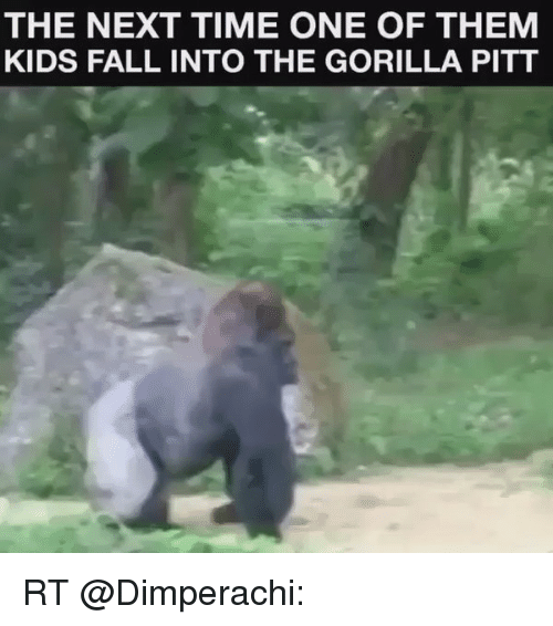 Fall, Kids, and Time: THE NEXT TIME ONE OF THEM  KIDS FALL INTO THE GORILLA PITT RT @Dimperachi: