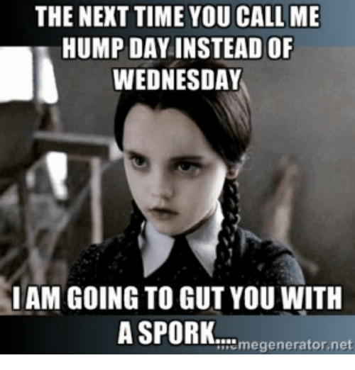 Hump Day, Memes, and Time: THE NEXT TIME YOU CALL ME  HUMP DAY INSTEAD OF  WEDNESDAY  I AM GOING TO GUT YOU WITH  A SPORK  generator net