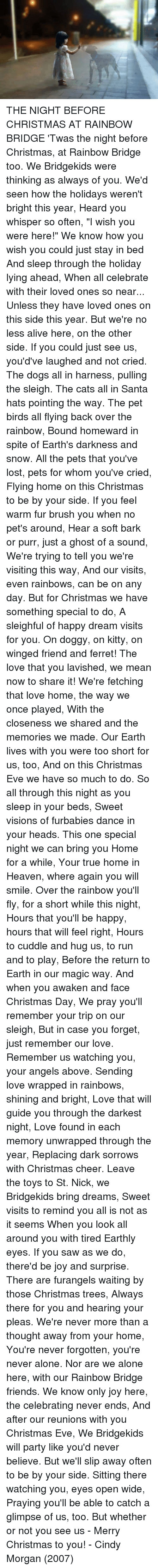 Alive, Dancing, and Heaven: THE NIGHT BEFORE CHRISTMAS AT RAINBOW BRIDGE  'Twas