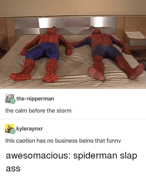 Ass, Funny, and Tumblr: the-nipperman  the calm before the storm  kyleraynxr  this caption has no business being that funny awesomacious:  spiderman slap ass