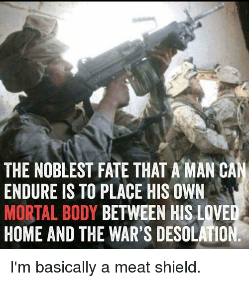 Memes, Home, and Fate: THE NOBLEST FATE THAT A MAN CA  ENDURE IS TO PLACE HIS OWN  MORTAL BODY BETWEEN HIS LOVED  HOME AND THE WAR'S DESOLATIO I'm basically a meat shield.