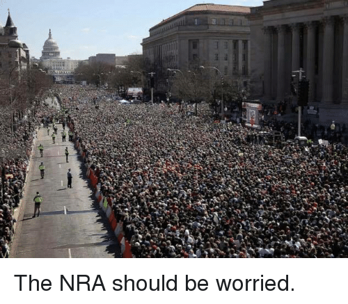 Memes, 🤖, and Nra: The NRA should be worried.