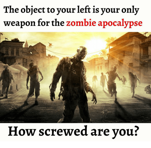 the object to your left is your only weapon for 10330961 ✅ 25 best memes about apocalypse apocalypse memes