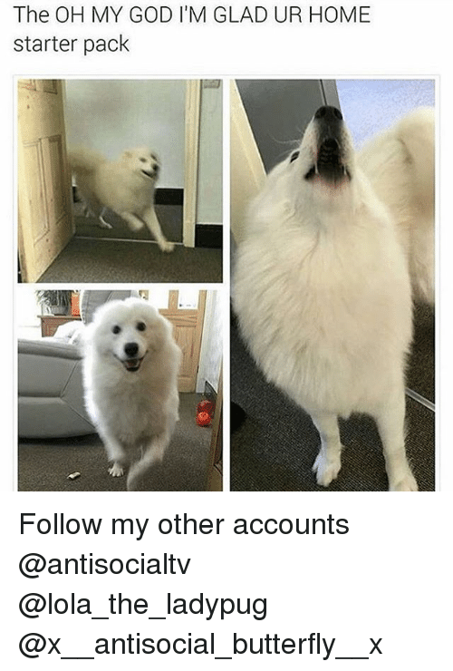God, Memes, and Oh My God: The OH MY GOD I'M GLAD UR HOME  starter pack Follow my other accounts @antisocialtv @lola_the_ladypug @x__antisocial_butterfly__x