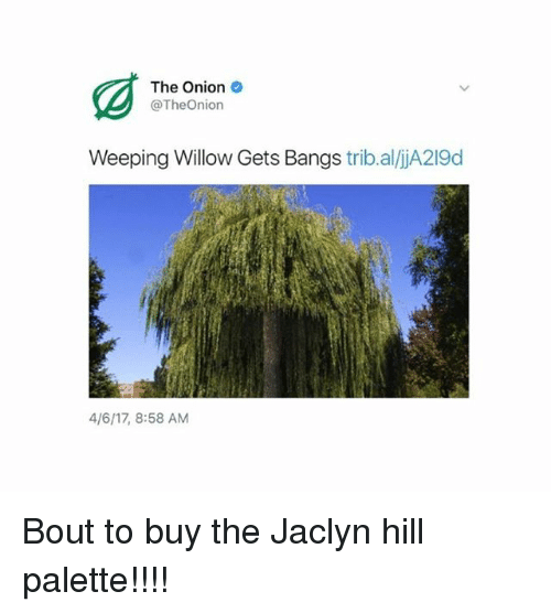 Memes, The Onion, and Onion: The Onion  @TheOnion  Weeping Willow Gets Bangs  trib.aliA219d  4/6117, 8:58 AM Bout to buy the Jaclyn hill palette!!!!