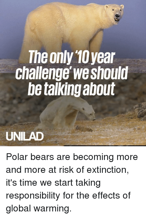 Dank, Global Warming, and Bears: The only 10year  Challenge we should  be talking about  UNILAD Polar bears are becoming more and more at risk of extinction, it's time we start taking responsibility for the effects of global warming.