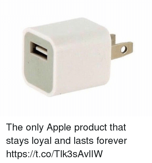 Apple, Forever, and Girl Memes: The only Apple product that stays loyal and lasts forever https://t.co/Tlk3sAvlIW