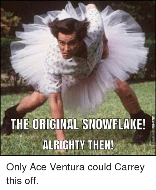 the original snowflake alrighty then only ace ventura could carrey 13773929 the original snowflake! alrighty then! only ace ventura could carrey