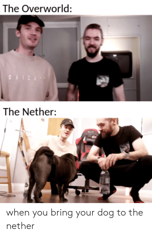 Dog, You, and When You: The Overworld:  The Nether: when you bring your dog to the nether