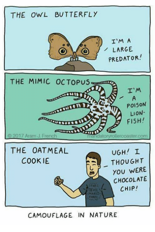 Memes, Devil, and Butterfly: THE OWL BUTTERFLY  e ..1) I'M A  O LARGE  PREDATOR!  THE MIMIC OCTOPUS  I'M  POISON  LION-  FISH!  2017 Aram J. French  datoryrollercoaster com  THE OATMEAL  UGH! L  COOKIE  A THOUGHT  YOU WERE  CHOCOLATE  CHIP!  DEVIL  MAKES  CAMOUFLAGE IN NATURE