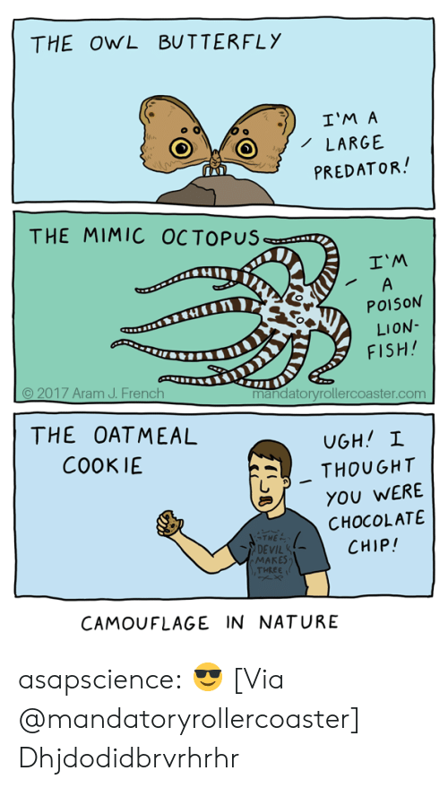 Tumblr, Devil, and Blog: THE OWL BUTTERFLY  I'M A  LARGE  PREDATOR  THE MIMIC OCTOPUS  I'M  POISON  LION  FISH  © 2017 Aram J. French  mandatoryrollercoaster.com  THE OATMEAL  COOKIE  . THOUGHT  YOU WERE  CHOCOLATE  CHIP!  THE  DEVIL  MAKES  THEEE  CAMOUFLAGE IN NATURE asapscience:  😎 [Via @mandatoryrollercoaster]  Dhjdodidbrvrhrhr