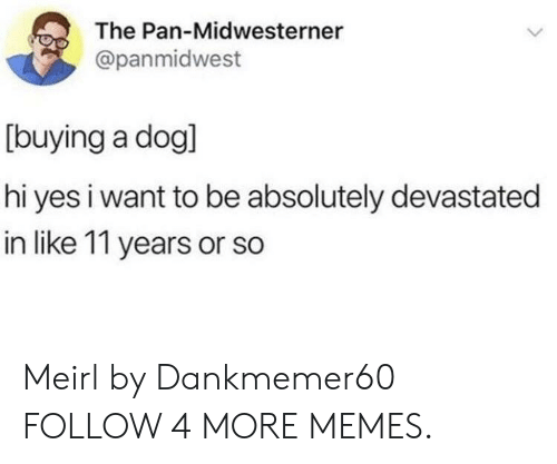 Dank, Memes, and Target: The Pan-Midwesterner  L  @panmidwest  [buying a dogl  hi yes i want to be absolutely devastated  in like 11 years or so Meirl by Dankmemer60 FOLLOW 4 MORE MEMES.