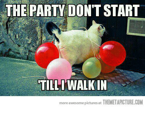 the party dont start till i walk in