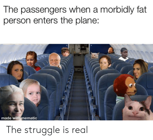 Struggle, The Struggle Is Real, and Fat: The passengers when a morbidly fat  person enters the plane:  made with mematic  নম The struggle is real
