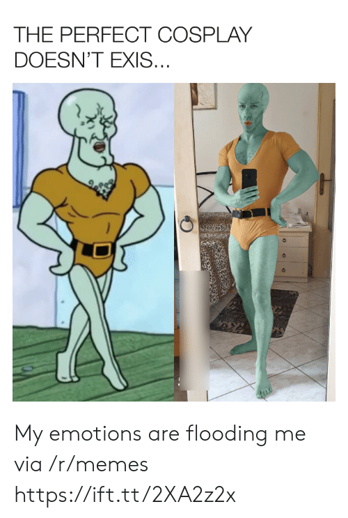 Memes, Cosplay, and Via: THE PERFECT COSPLAY  DOESN'T EXIS... My emotions are flooding me via /r/memes https://ift.tt/2XA2z2x