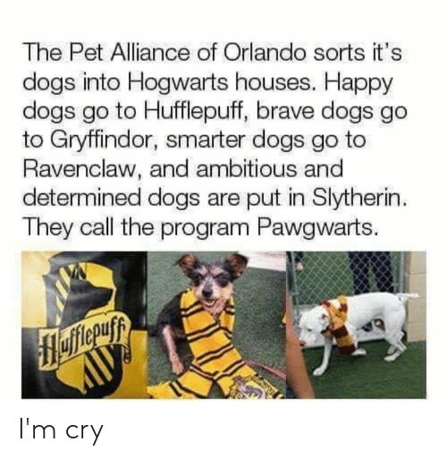 Dank, Dogs, and Gryffindor: The Pet Alliance of Orlando sorts it's  dogs into Hogwarts houses. Happy  dogs go to Hufflepuff, brave dogs go  to Gryffindor, smarter dogs go to  Ravenclaw, and ambitious and  determined dogs are put in Slytherin  They call the program Pawgwarts. I'm cry