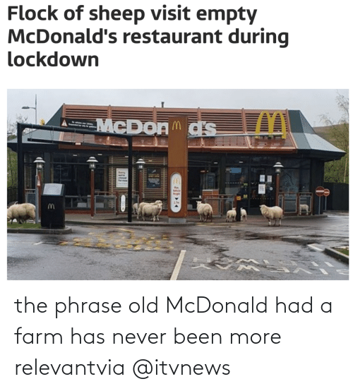 News, Target, and Restaurant: the phrase old McDonald had a farm has never been more relevantvia @itvnews