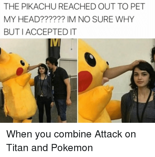 The Pikachu Reached Out To Pet My Head Im No Sure Why Buti