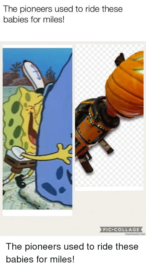 SpongeBob, Collage, and Babies: The pioneers used to ride these  babies for miles!  PIC.COLLAGE
