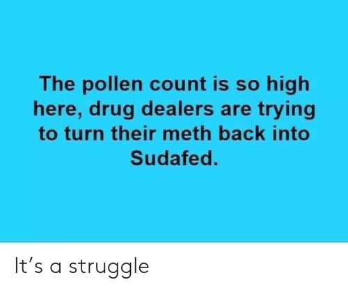 The Pollen Count Is So High Here Drug Dealers Are Trying to