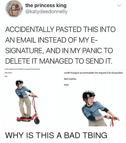 the princess king katydeedonnelly accidentally pasted this into an email 27952249 ✅ 25 best memes about signature signature memes