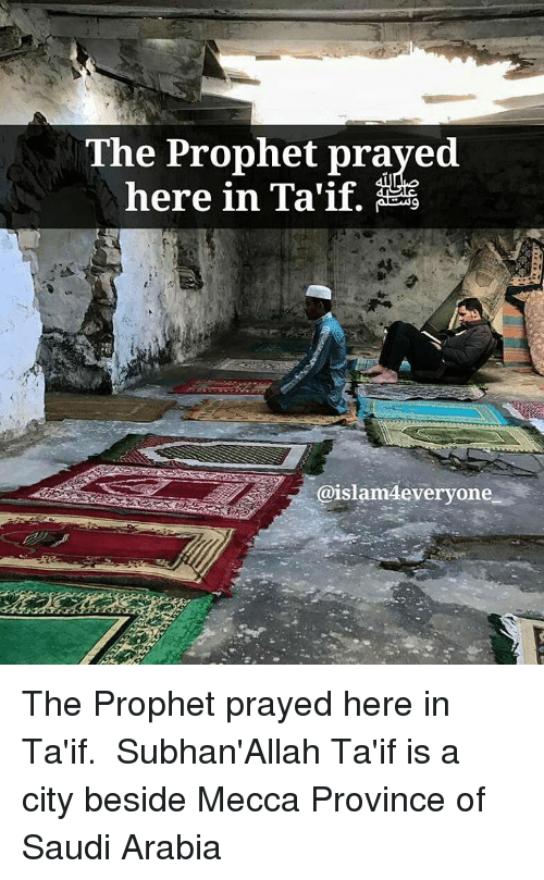Memes, Saudi Arabia, and The Prophet: The Prophet prayed  here in Taif.  @islam deveryone The Prophet prayed here in Ta'if. ﷺ Subhan'Allah Ta'if is a city beside Mecca Province of Saudi Arabia