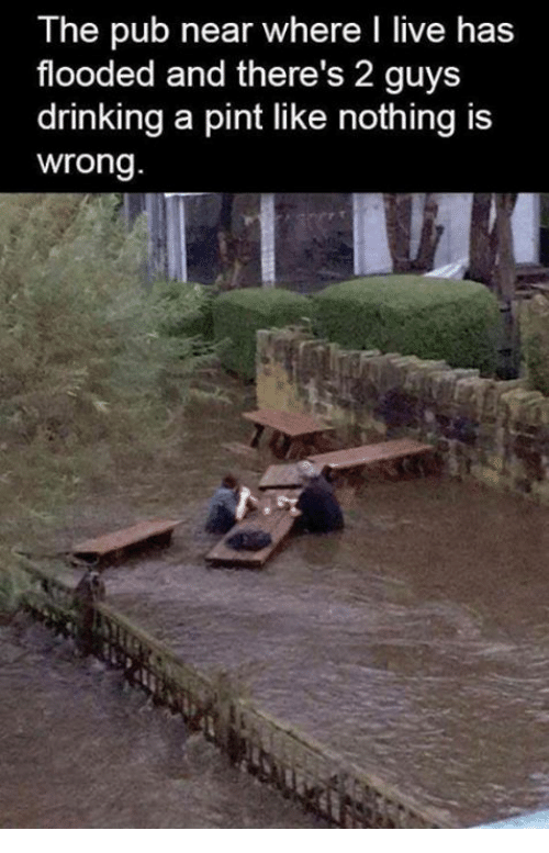 Dank, Drinking, and Live: The pub near where I live has  flooded and there's 2 guys  drinking a pint like nothing is  wrong.