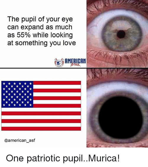 the pupil of your eye can expand as much as 24385893 ✅ 25 best memes about memes memes, meme generator