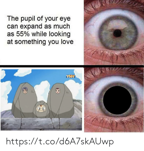Love, Eye, and Looking: The pupil of your eye  can expand as much  as 55% while looking  at something you love  THT https://t.co/d6A7skAUwp