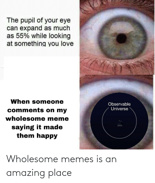 Love, Meme, and Memes: The pupil of your eye  can expand as much  as 55% while looking  at something you love  When someone  Observable  Universe  comments on my  wholesome meme  saying it made  them happy Wholesome memes is an amazing place