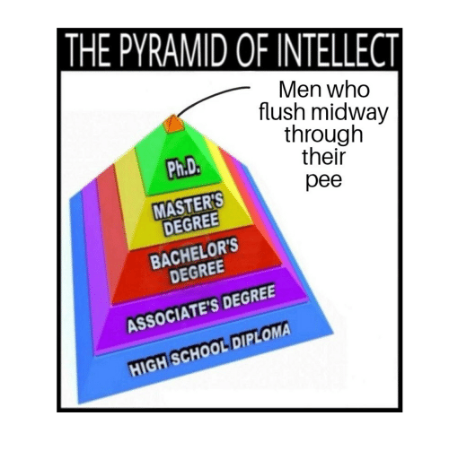 The Pyramid Of Intellect Men Who Flush Midway Through Their Pee Phd