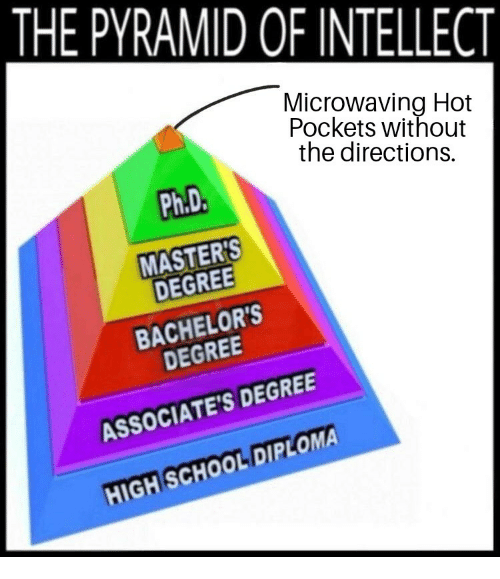 Hot Pockets, School, and Masters: THE PYRAMID OF INTELLECT  Microwaving Hot  Pockets without  the directions.  Ph.D  MASTERS  DEGREE  BACHELOR'S  DEGREE  ASSOCIATE'S DEGREE  HIGH SCHOOL DIPLOMA