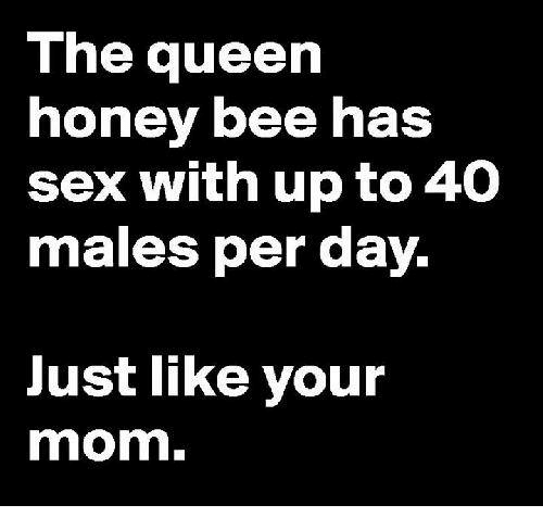 Memes, 🤖, and Honey: The queen  honey bee has  sex with up to 40  males per day.  Just like your  mom.