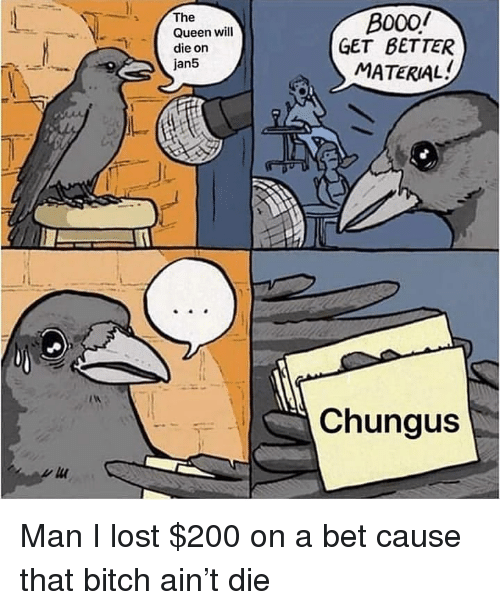 Bailey Jay, Bitch, and Memes: The  Queen will  die on  jan5  B000/  GET BETTER  MATERIAL  Chungus Man I lost $200 on a bet cause that bitch ain't die