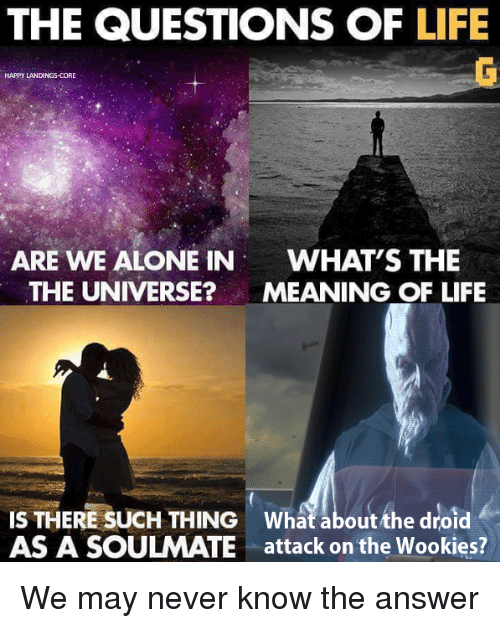 Being Alone, Life, and Star Wars: THE QUESTIONS OF LIFE  HAPPY LANDINGS-CORE  ARE WE ALONE IN  WHAT'S THE  THE UNIVERSE?MEANING OF LIFE  IS THERE SUCH THING What about the droid  AS A SOULMATE attack on the Wookies? We may never know the answer
