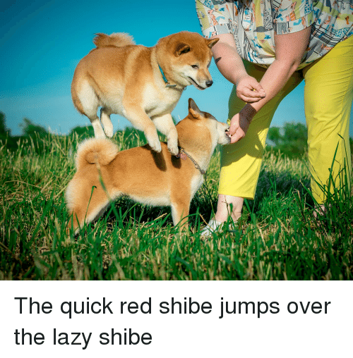 Lazy, Red, and Quick