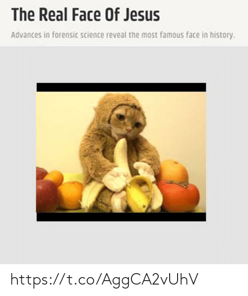 The Real Face Of Jesus Advances In Forensic Science Reveal The Most Famous Face In History Httpstcoaggca2vuhv Jesus Meme On Me Me