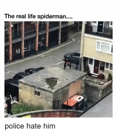 Life, Police, and Spiderman: The real life spiderman.... police hate him